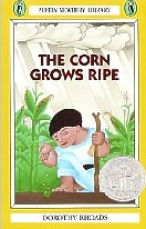 Corn Grows Ripe, Mayan story